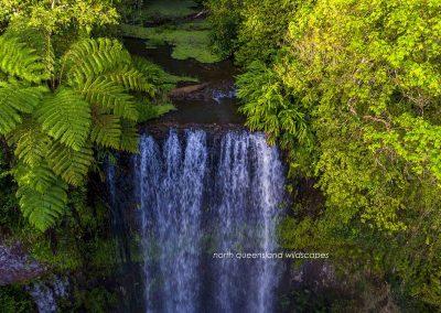 Millaa Millaa Falls (1)