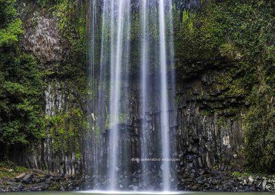 Millaa Millaa Falls (3)