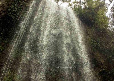 Millaa Millaa Falls (4)