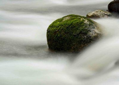 Water Detail (6)