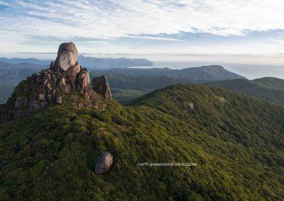 Daintree Wilderness (2)