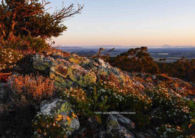 Dawn Colours Mt Emerald