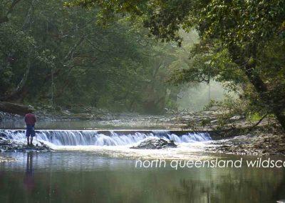 Downey Creek