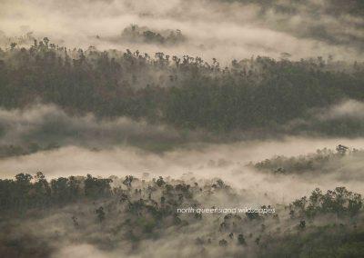 Goldsborough Valley Dawn 2