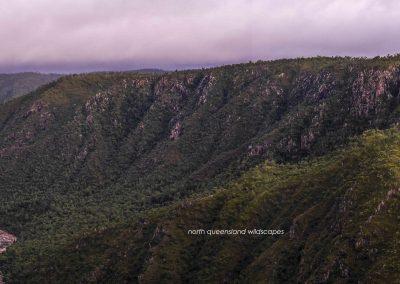 Herbert River Gorge 1