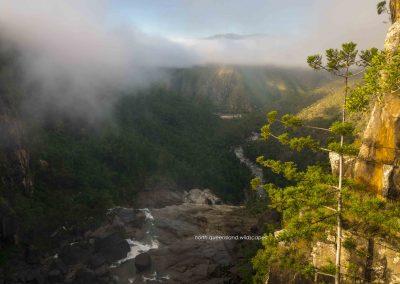 Herbert River Morning (3)