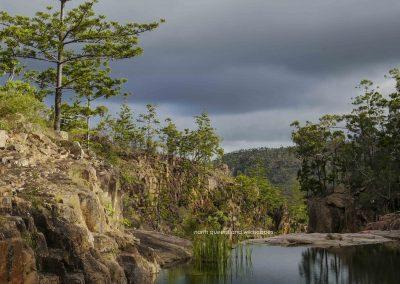 Hoop Pine Gorge