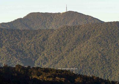 Mt Bellenden Ker