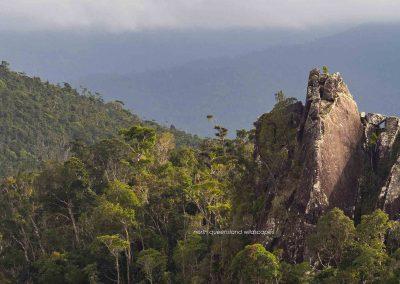 Mt Tyson near Tully