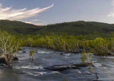 Walsh River (12)