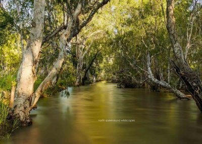 Walsh River (9)