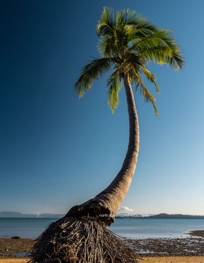 Dunk-Island-(9)