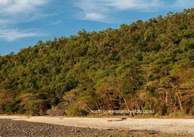 Pelorus-Island-(4)