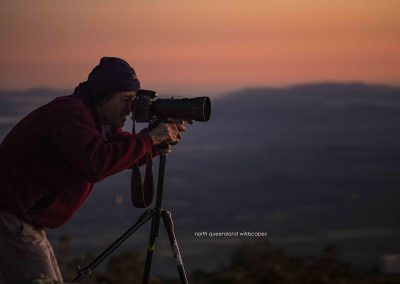Dawn Photographer